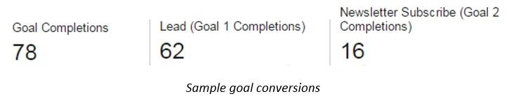 Sample Google Goal Conversions jpg